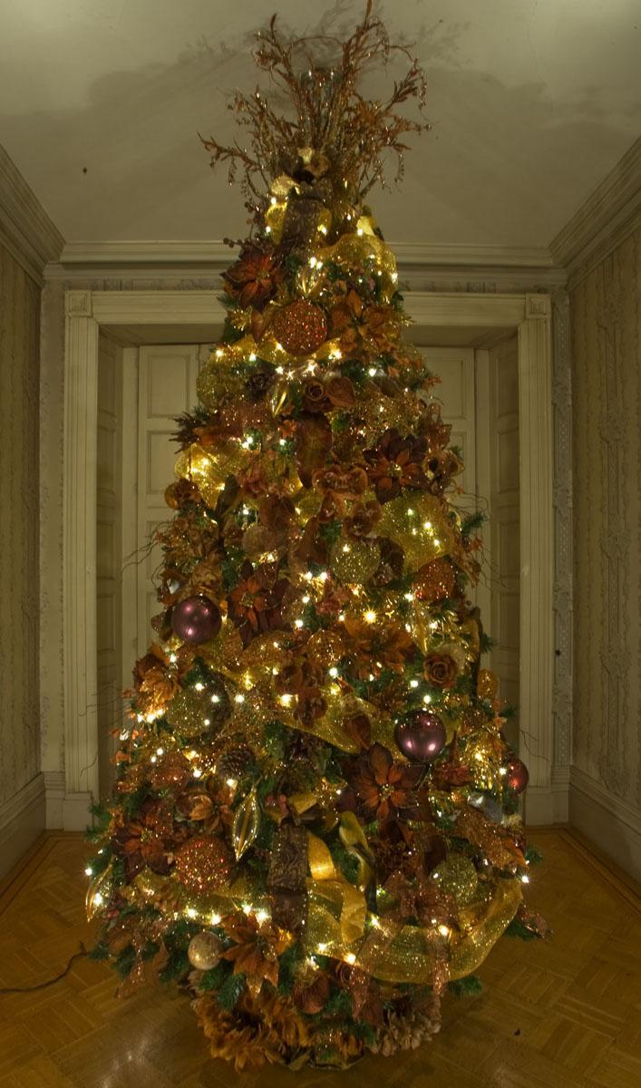 Upstairs Tree